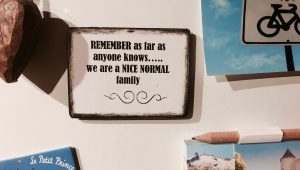 "A magnet on a fridge that reads ""REMEMBER as far as anyone knows.....we are a NICE NORMAL family"""