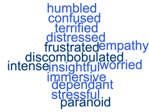 Word cloud displaying the words humbled, confused, terrified, distressed, frustrated, empathy, discombobulated, worried, insightful, intense, immersive, dependant, stressful, paranoid
